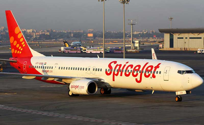 SpiceJet Announces New Daily Direct Flights Fares Start From Rs 2999