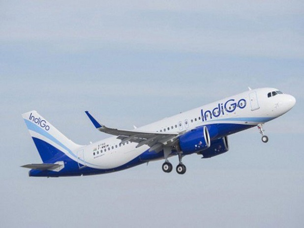 goIndigo Group Booking